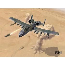 1376, 1/72 A-10 Gulf War