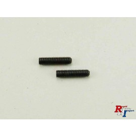 19805684 3x12mm Screw (2 pcs.)